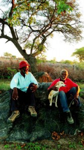 Abraham Ndhlovu and leading indigenous permaculture innovator Cleopas Banda from Gudo