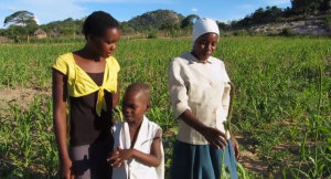 Ndakaziva Hove and her children in her field of indigenous bulrush millet. The local land race