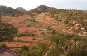 The Madzoke valley in the heart of Mazvihwa.  Each hill is the ancestral stronghold (nhare) of our one of our founding families. Intensive farming of the sandy soils and natural wetlands in between requires great attention to managing water and soil structure and fertility over many years.