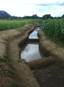 These structures trap water in Mazvihwa's rainstorms preventing damaging erosion during run-off and providing seepage to crops in subsequent dry spells, photo from Madyakuseni, 2014