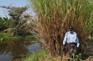 Phiri at dam
