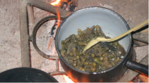 "Cooking up the delicious ""matylonza"" (the giant larvae of sphingid moths)."