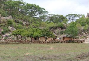 Indigenous innovation: the original Sadzauchi wall that inspired this effort.
