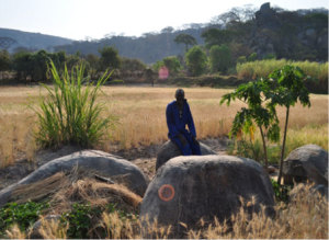 Mr. Magwisanye in 2010 in his field of winter wheat in a natural wetland for which his father and then he developed an elaborate systems of ponds and gravity-based irrigation systems to enable production throughout the year and in both wet and dry years.  In the 1940s the government banned his father from growing wheat, and he only began again after independence.